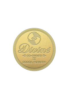 Divine Chocolate - Smooth Milk Giant Coin - 12 x 58g